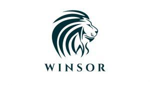 【Winsor ← Munics ← Youbank】Winsorの運用記録